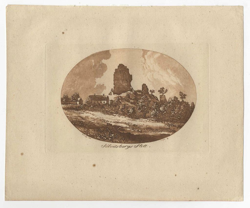 17921.jpg