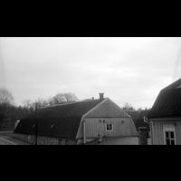 Blm_A 1482.jpg